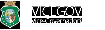 logotipo-vicegov-branco-v2 (2)